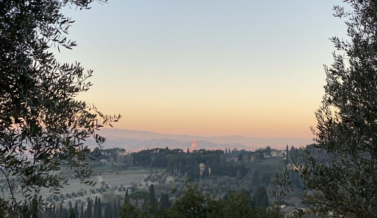 view over Florence and the I Tatti estate from the surrounding hillside
