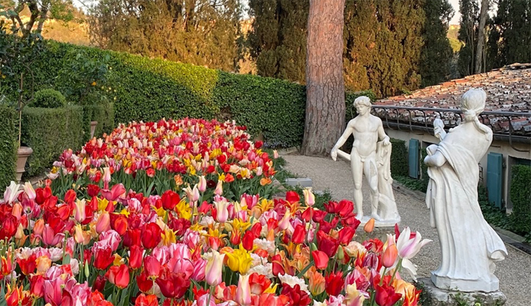 statues and tulips in the garden of I Tatti