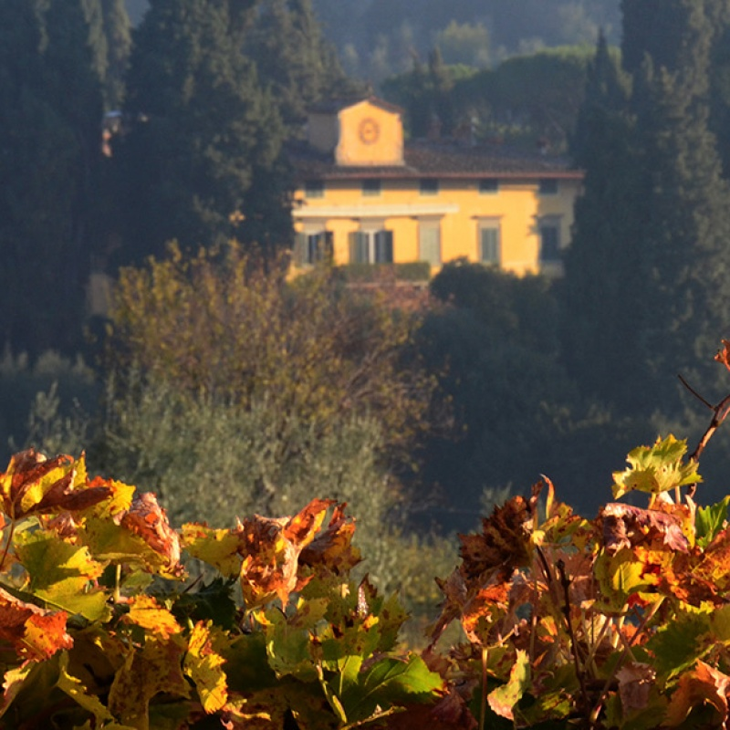 Call for Applications: Villa I Tatti Fellowships 2018/2019