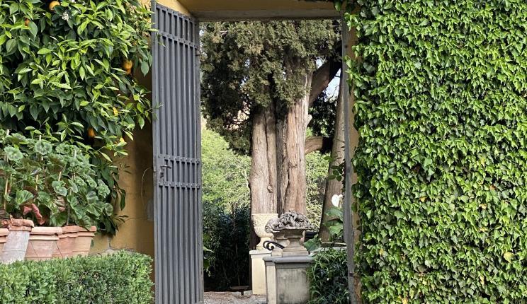Photo of doorway in I Tatti's garden