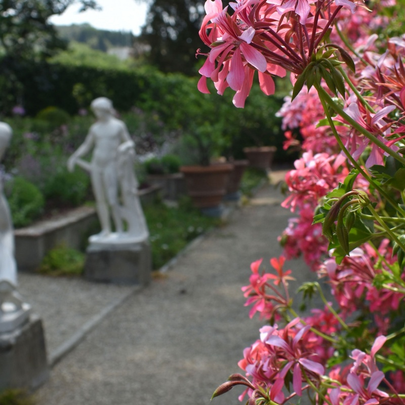 Statues and flowers in the I Tatti garden